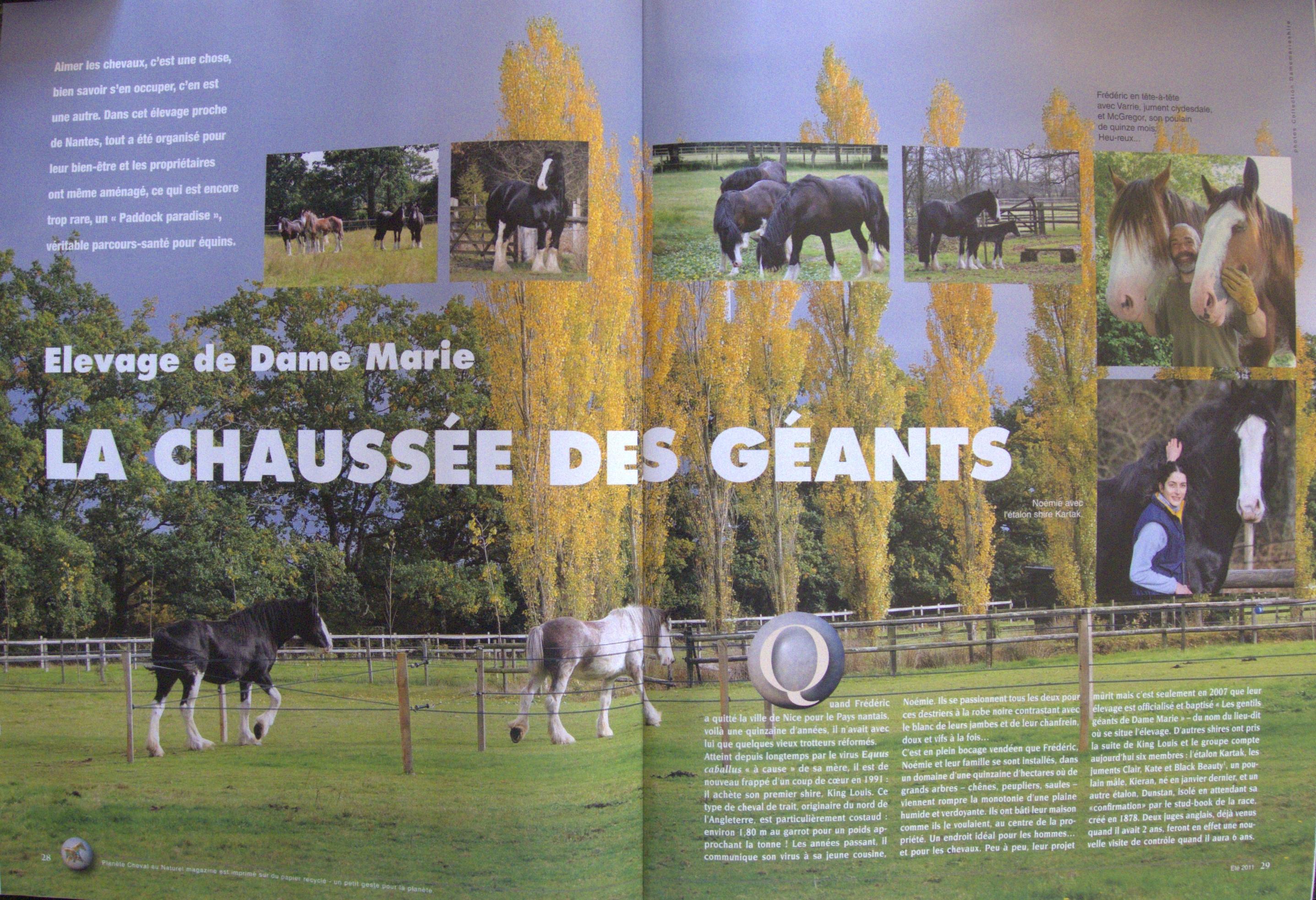Cheval Nature n°24 (Mai,Juin,Juillet 2011), p28 à 35