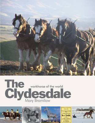 The Clydesdale : Workhorse of the World, le livre de Mary Bromilow